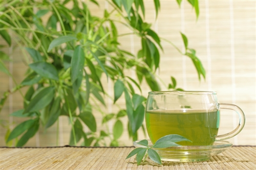 Bamboo & Green Tea
