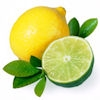 4oz. bottle of Citrus Basil fragrance oil for candles. Synthetic Carrier.  1/2 oz -1 oz. per pound of wax.