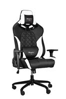 RBG Multicolor Light R1 Gaming Chair Race Style Seat with Lumbar and Pillow Support (BLACK+WHITE)