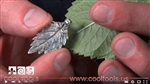 Project Video - Leaf Textures in Metal Clay