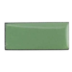 Medium Enamel Opaque #1315 Willow Green