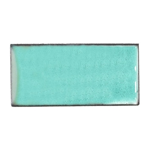 Medium Enamel Transparent #2310 Peppermint Green