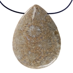 Fossil Coral Gemstone - Pear Pendant 29mm x 38mm