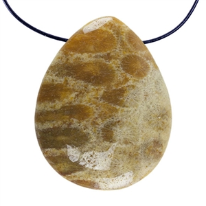 Fossil Coral Gemstone - Pear Pendant 27mm x 34mm