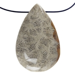Fossil Coral Gemstone - Pear Pendant 27mm x 41mm