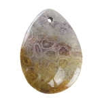 Fossil Coral Gemstone - Pear Pendant 27mm x 36mm