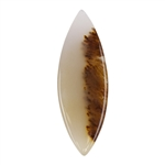 Natural Dendritic Agate Gemstone - Cabochon Freeform 13.5mm x 38.5mm