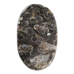Turritella Agate Gemstone - Defective Stone - Freeform Pendant 30mm x 50mm