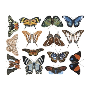 Enamel, Ceramic & Glass Decals - Colorful Butterflies #2