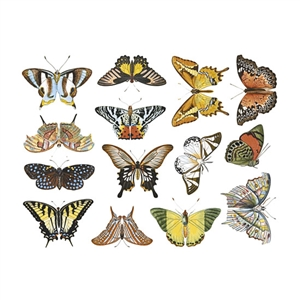 Enamel, Ceramic & Glass Decals - Colorful Butterflies #1