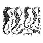 Enamel, Ceramic & Glass Decals - Seahorse