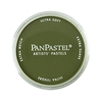 PanPastel - Hansa Yellow Extra Dark