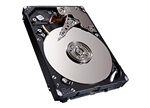 Seagate SAS 300GB 15000RPM  Serial Attached SCSI Hard Drive.  Mfg # 9XM066-251