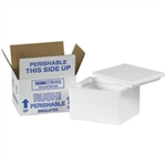 FIS 0643 Foam Insulated Shipping Boxes 6x4.5x3