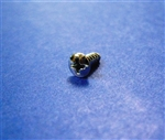 Chrome Plated Oval Head Screw - 2.9 x 9.5