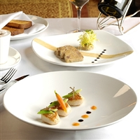 CONTOUR COUPE SHAPE & STEELITE CASUAL DINNERWARE
