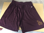Ladies PE Shorts