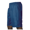 Alleson Athletic | Adult eXtreme Mesh Short | 784-ALL-569P