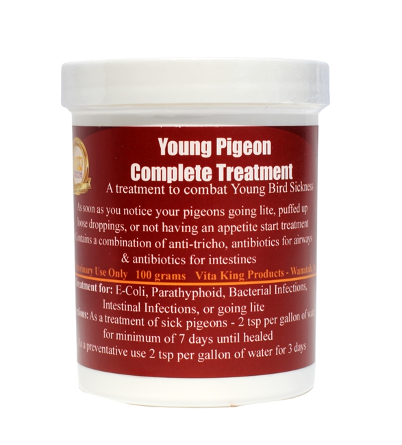 Young Pigeon Complete Treatment