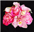 Natural Touch Roses & Orchids Cake Topper - Your Colors!