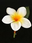 Natural Touch Plumeria Boutonniere