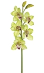 Natural Touch Green Cymbidium Orchid Spray Stem