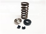 Ferrea Spring Kit for J Series Engines