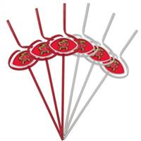 Maryland Terrapins Team Sipper Straws
