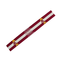 Minnesota Golden Gophers NCAA Elastic Headband