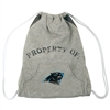 Carolina Panthers NFL Hoodie Clinch Bag