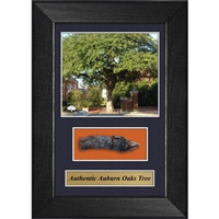 Auburn Oaks Authentic Oak Frame