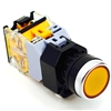 YC-P22PMO-IFY-6  22MM ILLUMINATED PUSH BUTTON