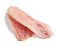 FRESH TILAPIA FILLET