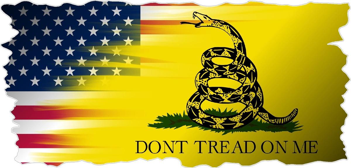 american gadsden flag