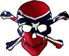 Rebel Flag Skull Crossbones