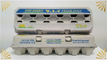12ct Generic Print Egg Cartons