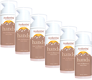 100ml/3.4oz HANDS 6-PACK