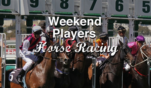 Weekend Warrior Horse Racing Service