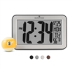 Atomic Self-Setting, Self-Adjusting Panoramic Clock (Silver)