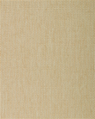 Pale Sand Paperweave Grasscloth