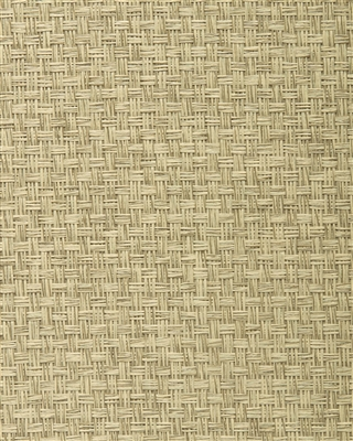 Ash Gray Paperweave Grasscloth