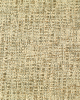 Pale Gray Paperweave Grasscloth