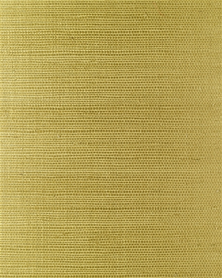 Pale Green Sisal Grasscloth