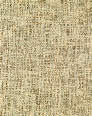 Blue Blend Paperweave Grasscloth
