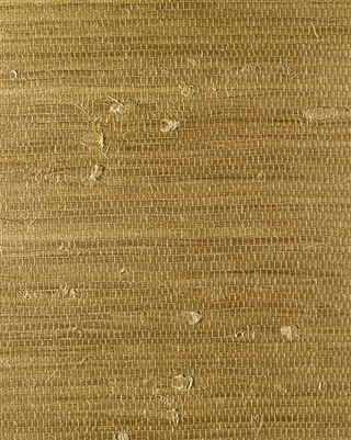 Pale Bronze Jute Grasscloth