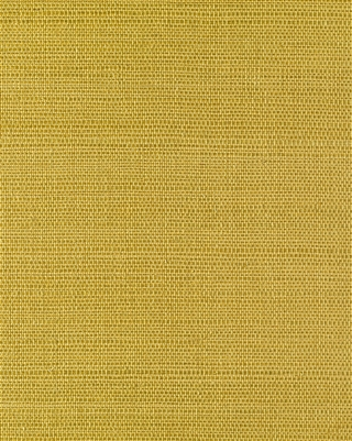 Sunny Gold Sisal Grasscloth