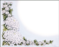 Falls 704 Enclosure Card - White Flowers with Holly