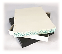 Minute Filler Two Post & Three Ring (250 Sheets)