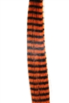 Stripes Tangerine- 8pack