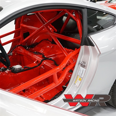 S550 MUSTANG ROAD RACE ROLL CAGE (WR-15-ROADRACECAGE) 2015-2019